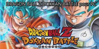 DRAGON BALL Z DOKKAN BATTLE pour PC